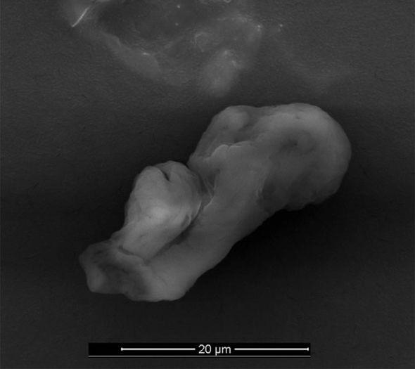 Microbio ET 1