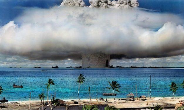 Hallan vida en Zona de Pruebas Nucleares 70 años después
