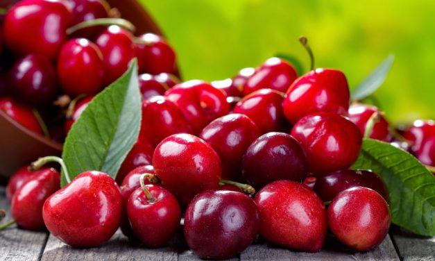 Las Cerezas pueden ser muy peligrosas para la Salud