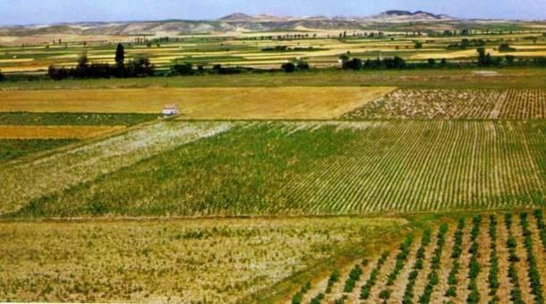 Agricultor afirma que al innovar podremos vivir en la Tierra para Siempre