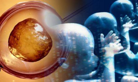 Crean el primer Embrión Humano Genéticamente Modificado en EE.UU.