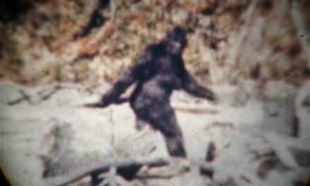 Científicos creen que los restos del Yeti recolectados son falsos