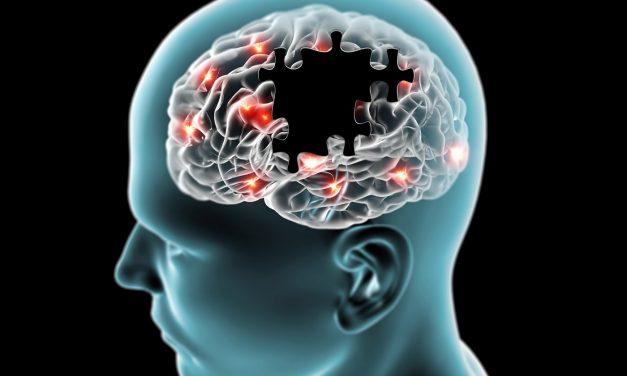 Científicos explican la causa de la degeneración cerebral