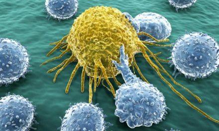 EUA autoriza alterar genéticamente virus letales