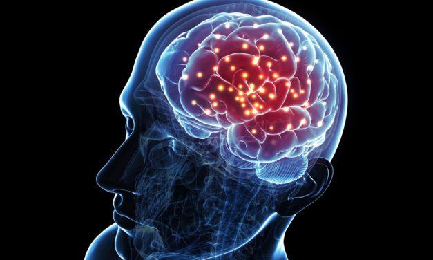 Científicos revelan qué sucede con el Cerebro al Morir